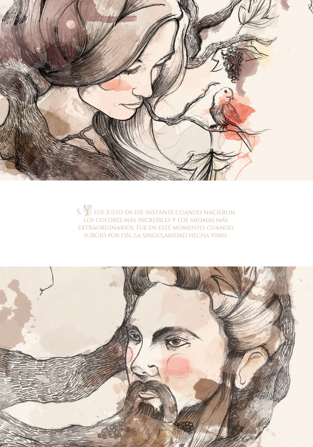 mgwines-baco-packaging-ilustracion-05