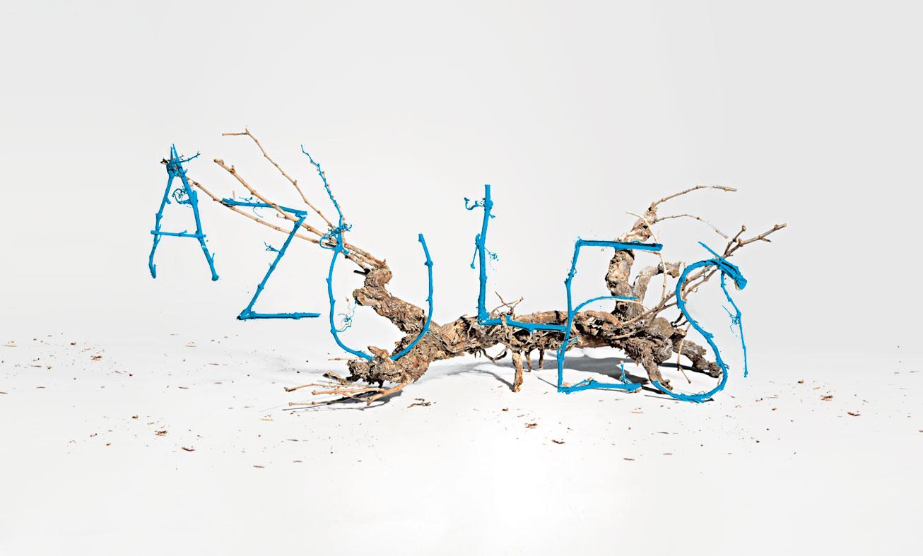 ugedafita-azules-sarmientos