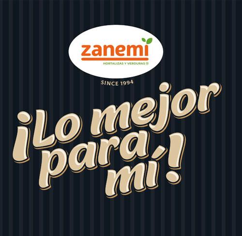 Proyecto global de marca Zanemi