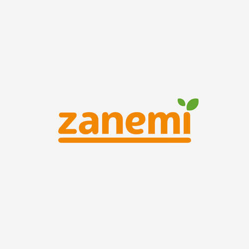 Proyecto de branding Zanemi