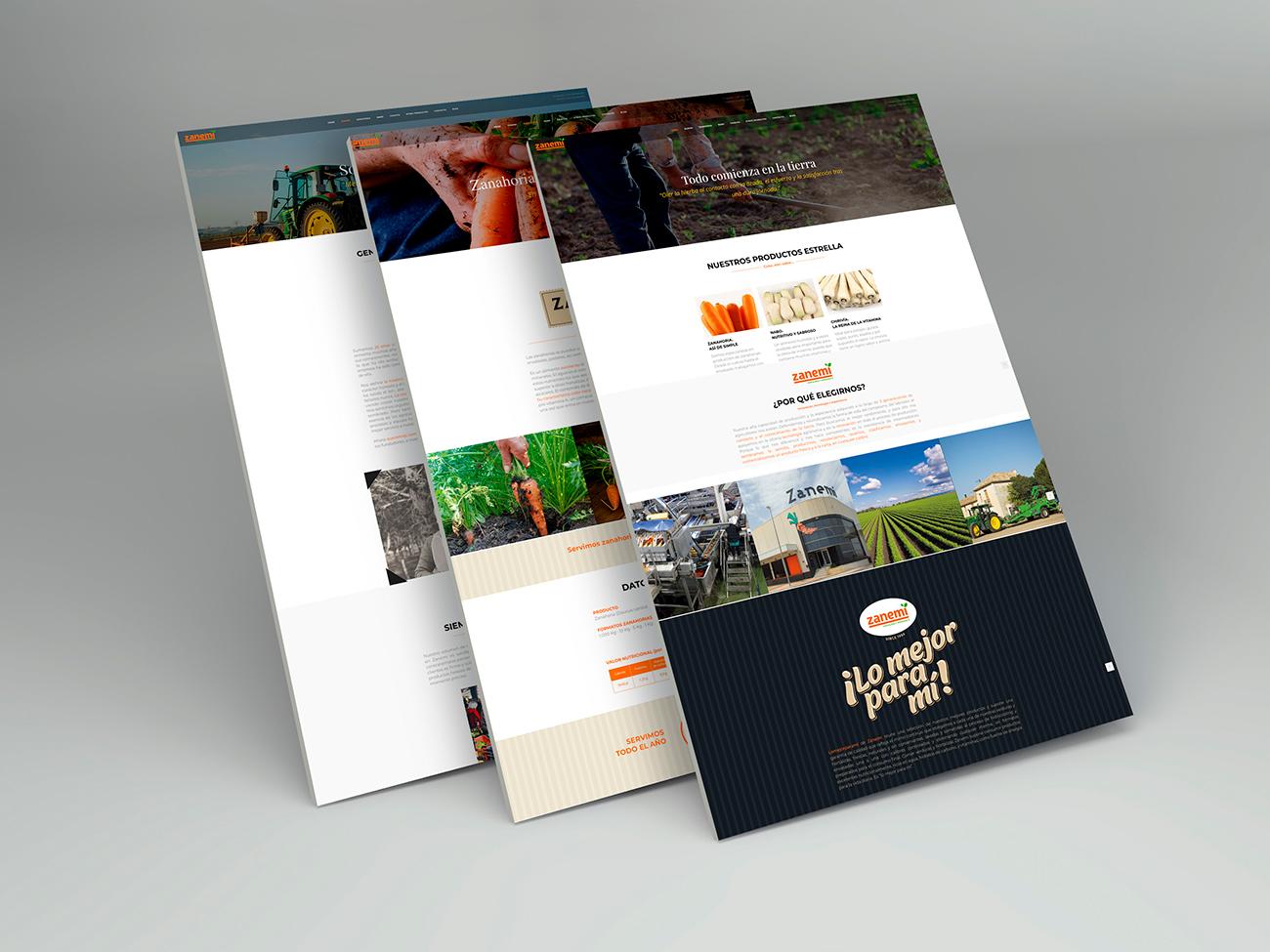 zanemi web branding 02