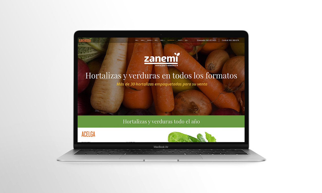 zanemi web branding 03