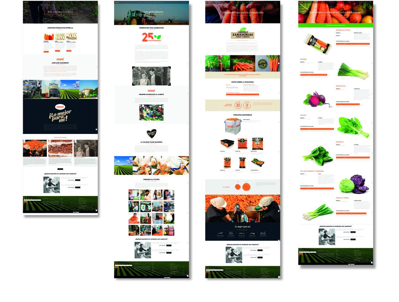 zanemi web branding 04