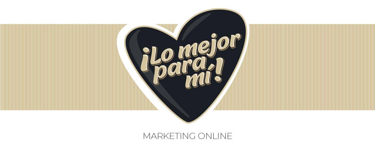 zanemi web branding 11