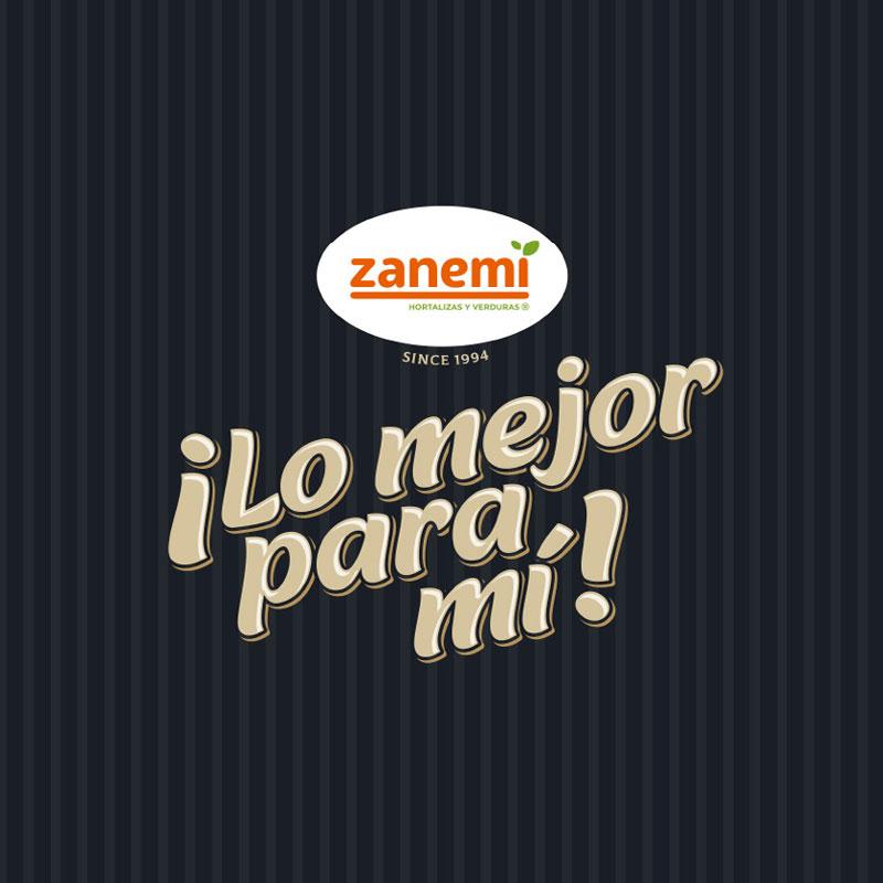 Diseño web Zanemi